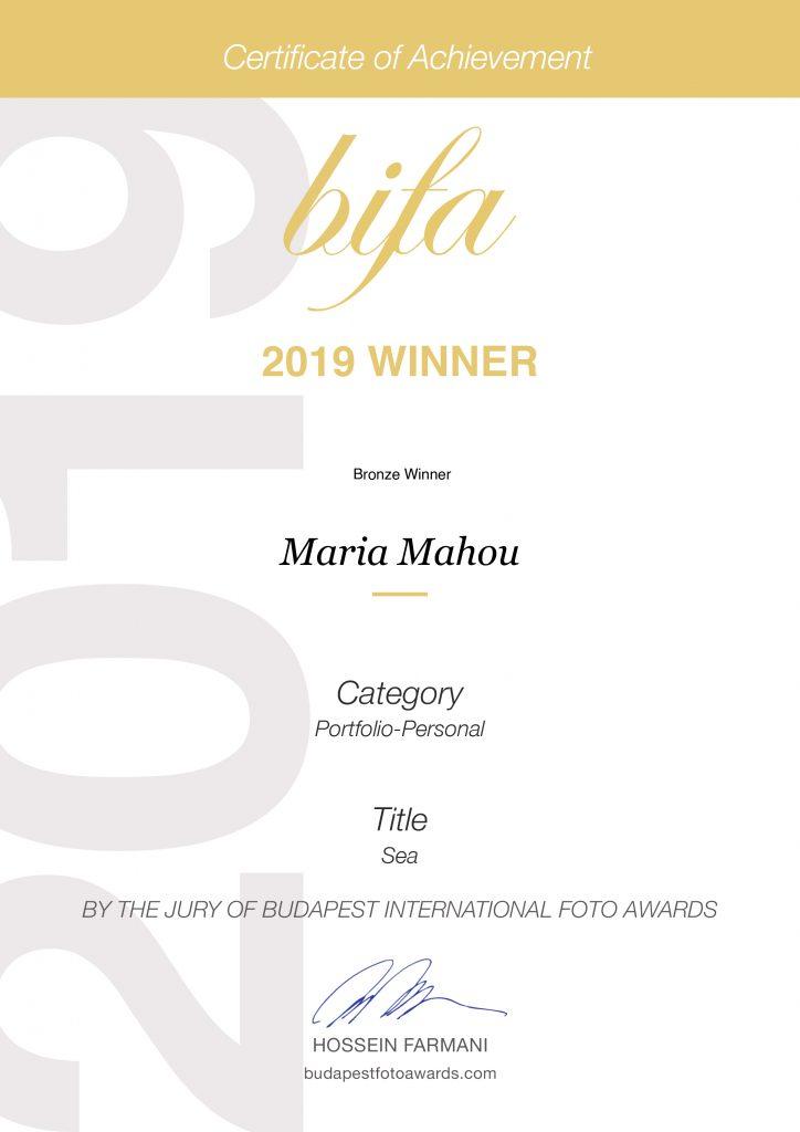 ΒIFA Bronze 2019